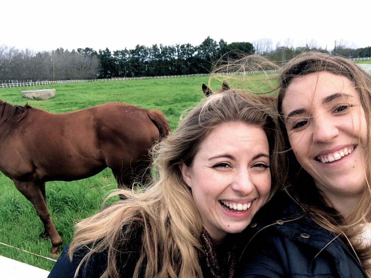 Because sometimes, you go for the selfie with the beautiful horses and all you get is a selfie with a horse's ass.